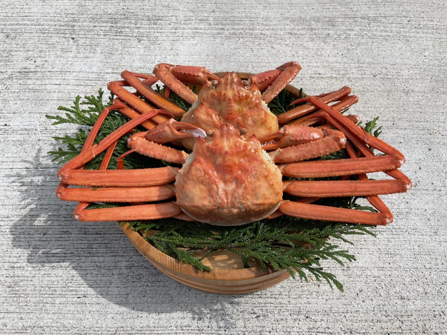 紅ズワイガニ蟹 1kgオーバー!!!